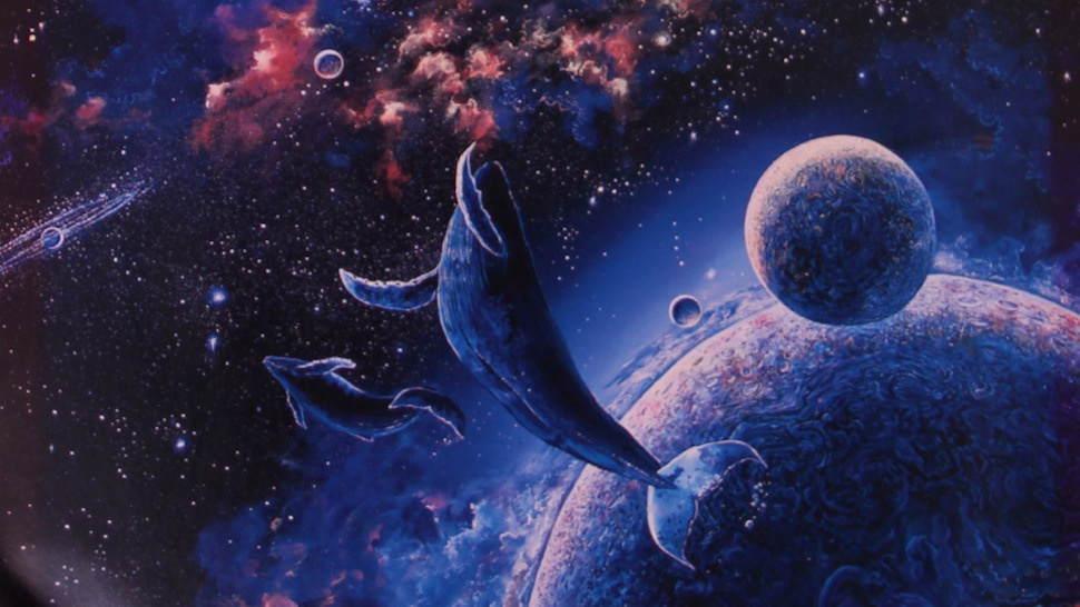 Так, це кит в космосі, просто читай далі