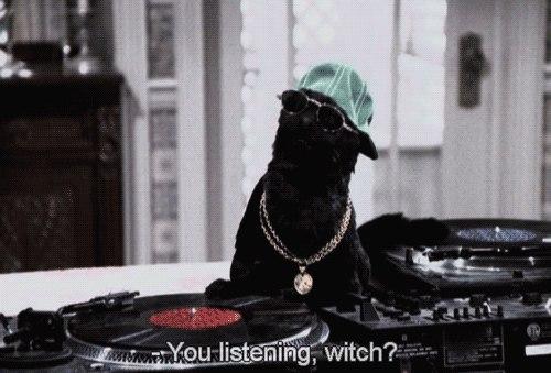 Salem - кіт із ситкому про